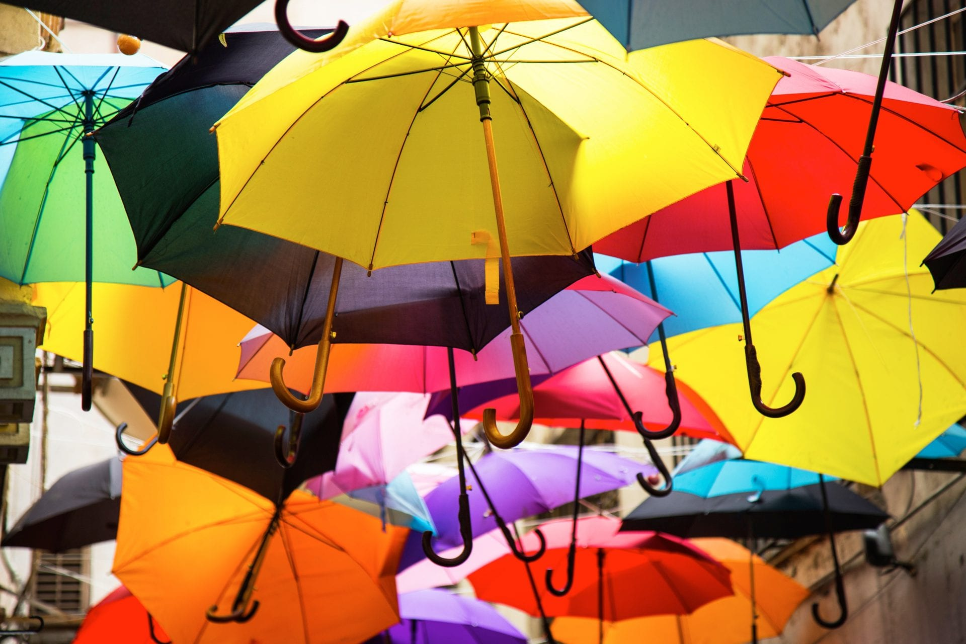 Umbrella Protection - From Engin Akyurt in Pexels