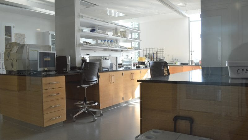 LMU Life Sciences Center - Laboratory View